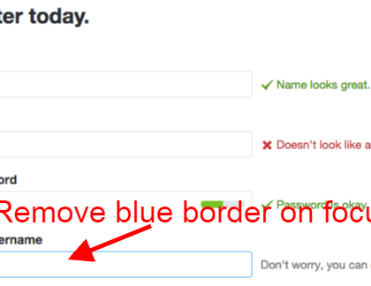 Removing 'blue border' from input text field